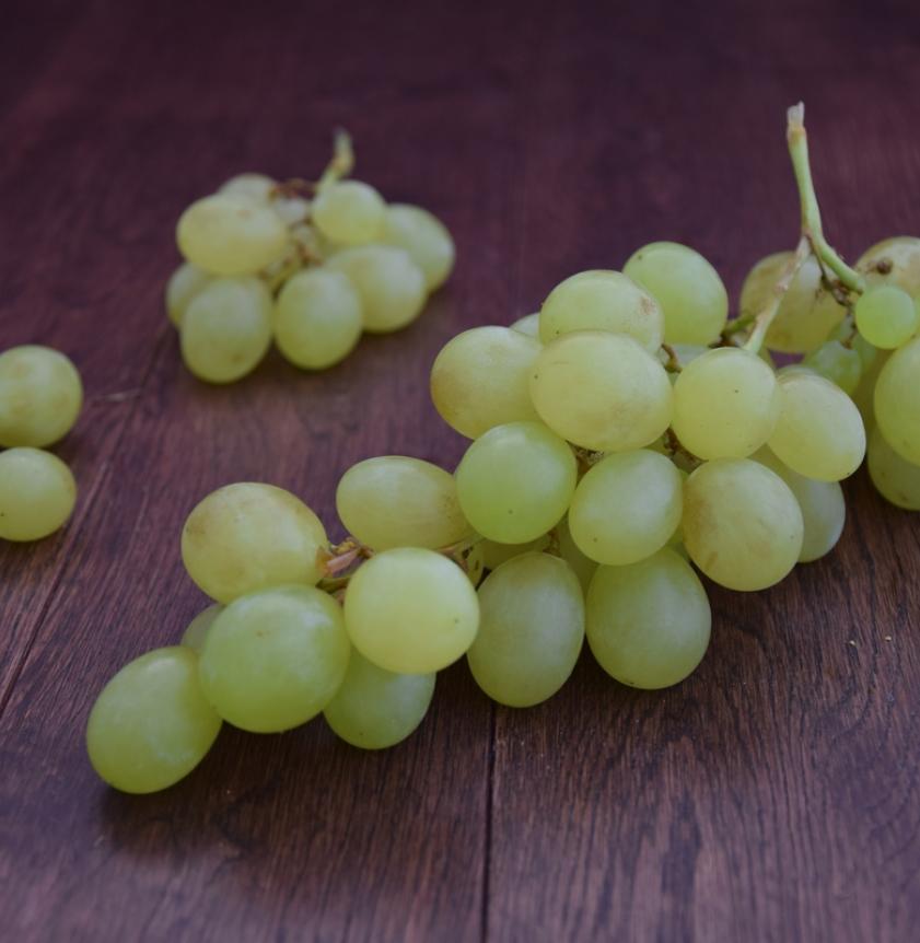 Uva bianca pizzutella
