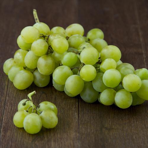 Uva bianca italia