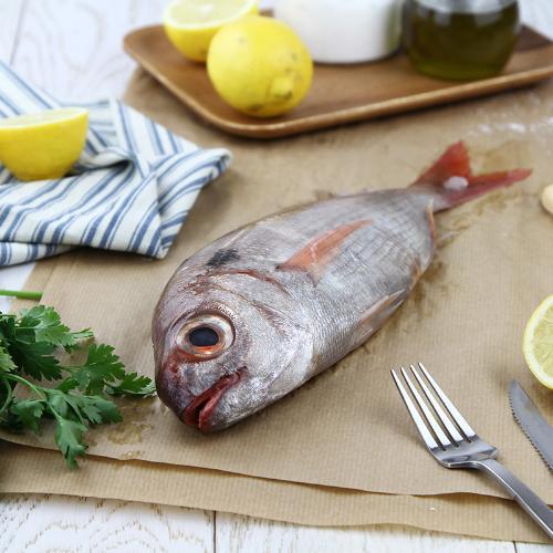 Pagello pescato