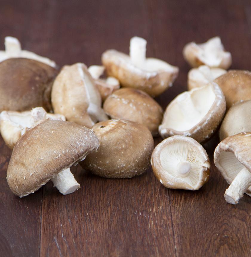 Funghi Shiitake freschi BIO in vaschetta