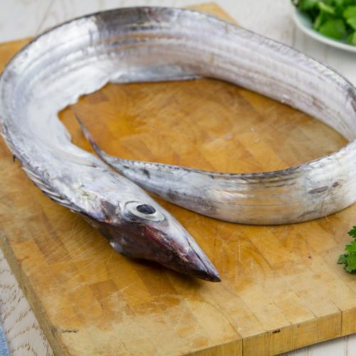 Pesce sciabola