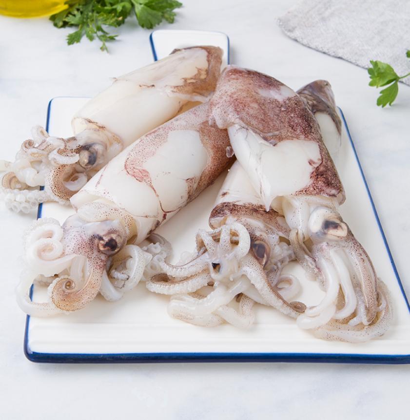Calamari del Mediterraneo